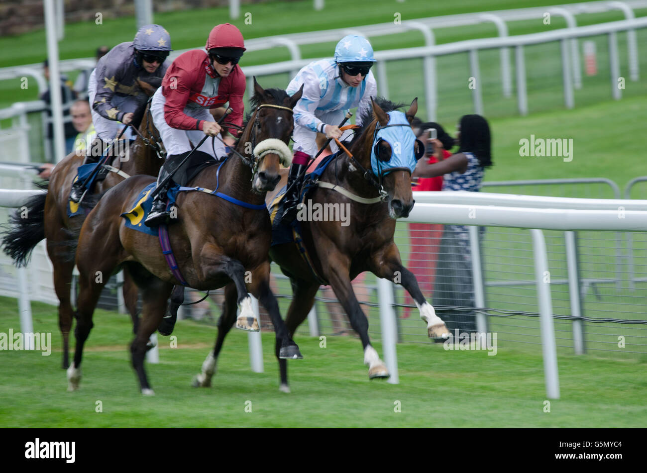 Horse racing in Chester 11th of June 2016. - Stock Image