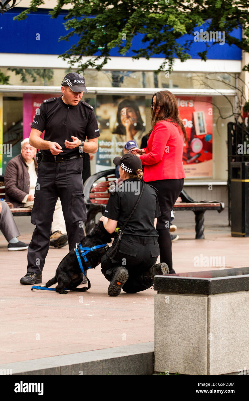 Dundee, Tayside, Scotland, UK. June 22nd 2016. Two Police Scotland police officers training a sniffer dog in Dundee - Stock Image