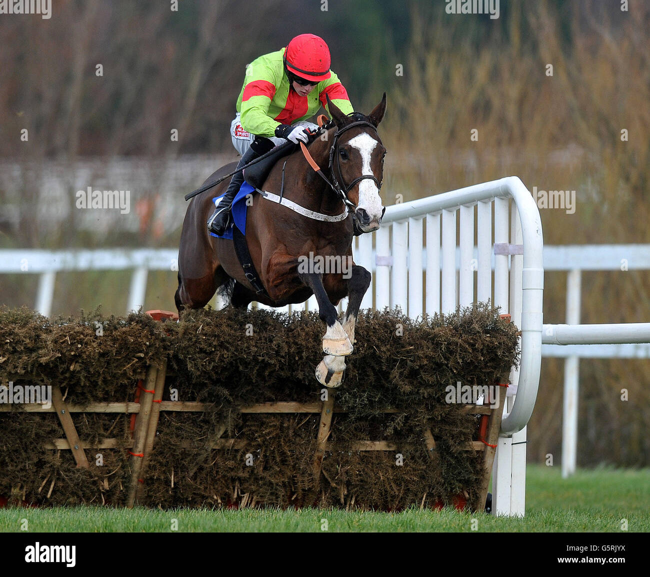 Horse Racing - Hennessey Gold Cup Day - Leopardstown Racecourse Stock Photo