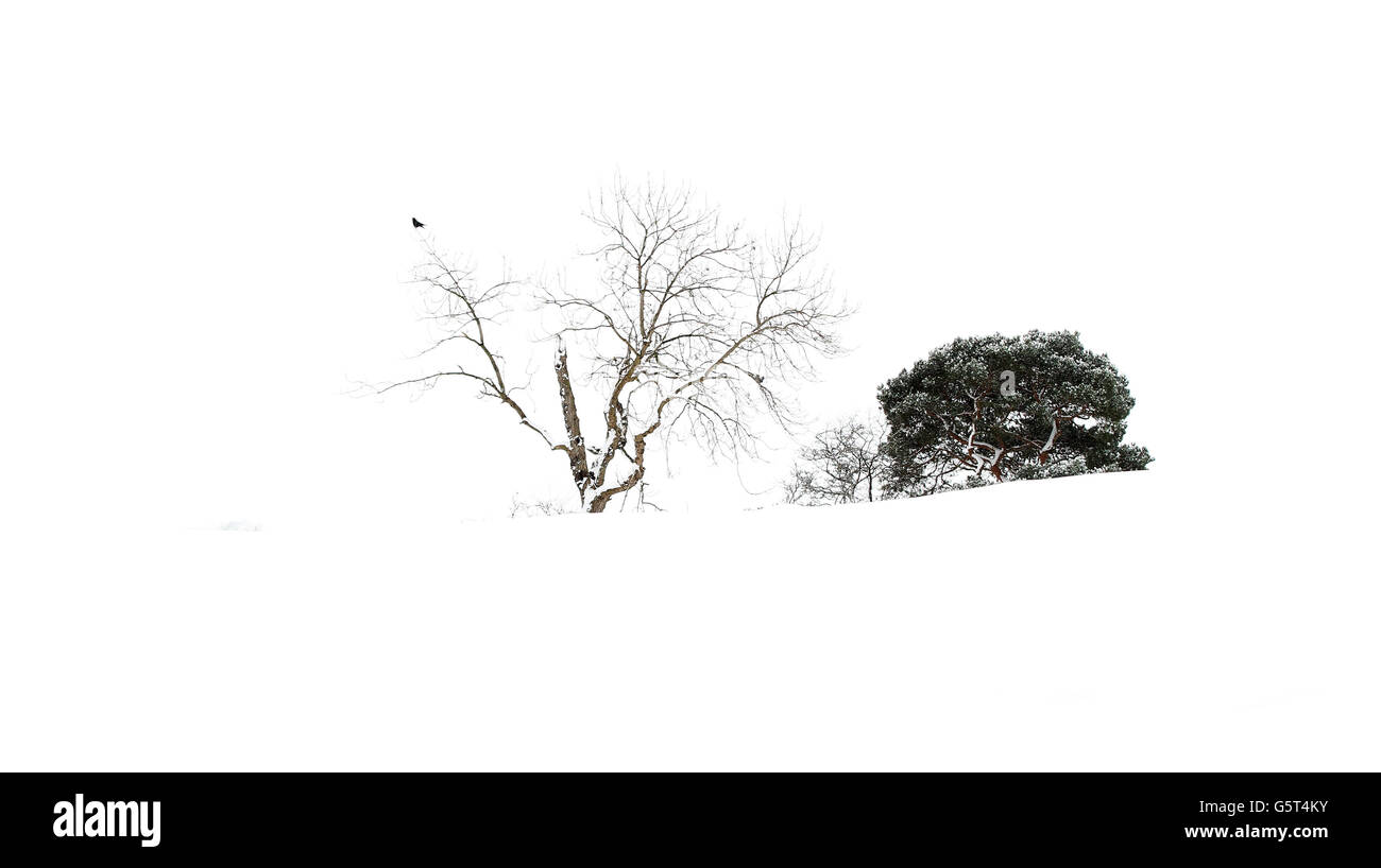 Winter weather - Jan 21st - Stock Image