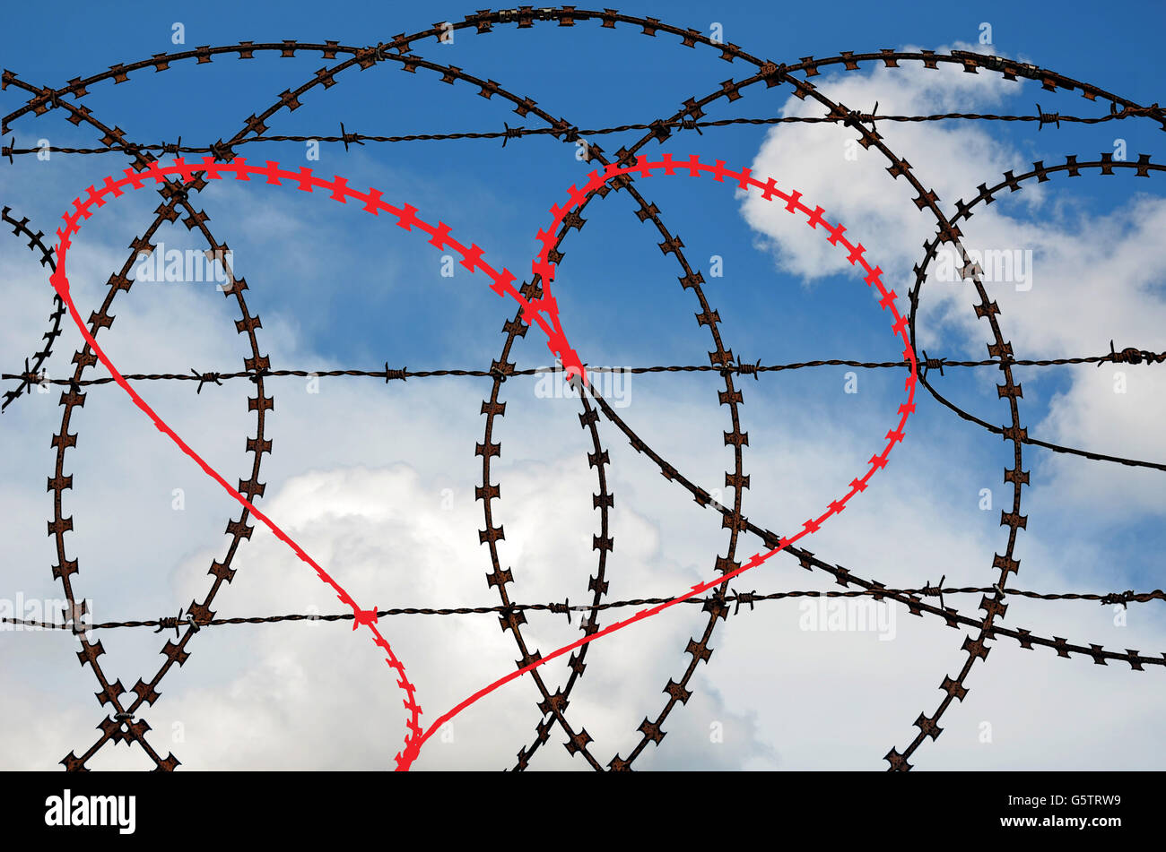 Heart With Barbed Wire Stock Photos & Heart With Barbed Wire Stock ...