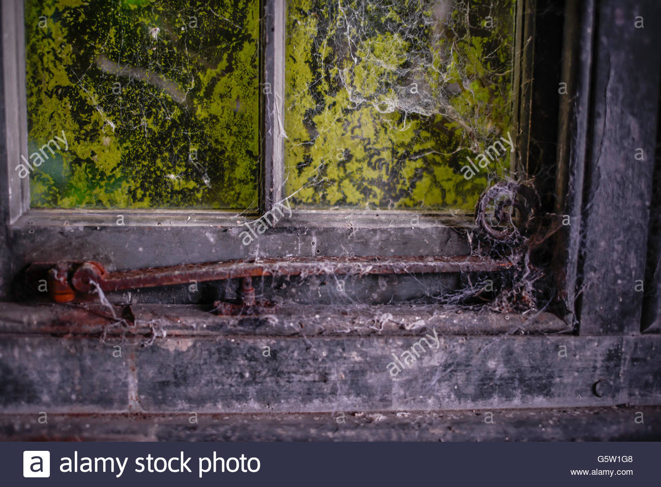 Old Wooden framed window pains with iron handles covered in moss and cobwebs. - Stock Image