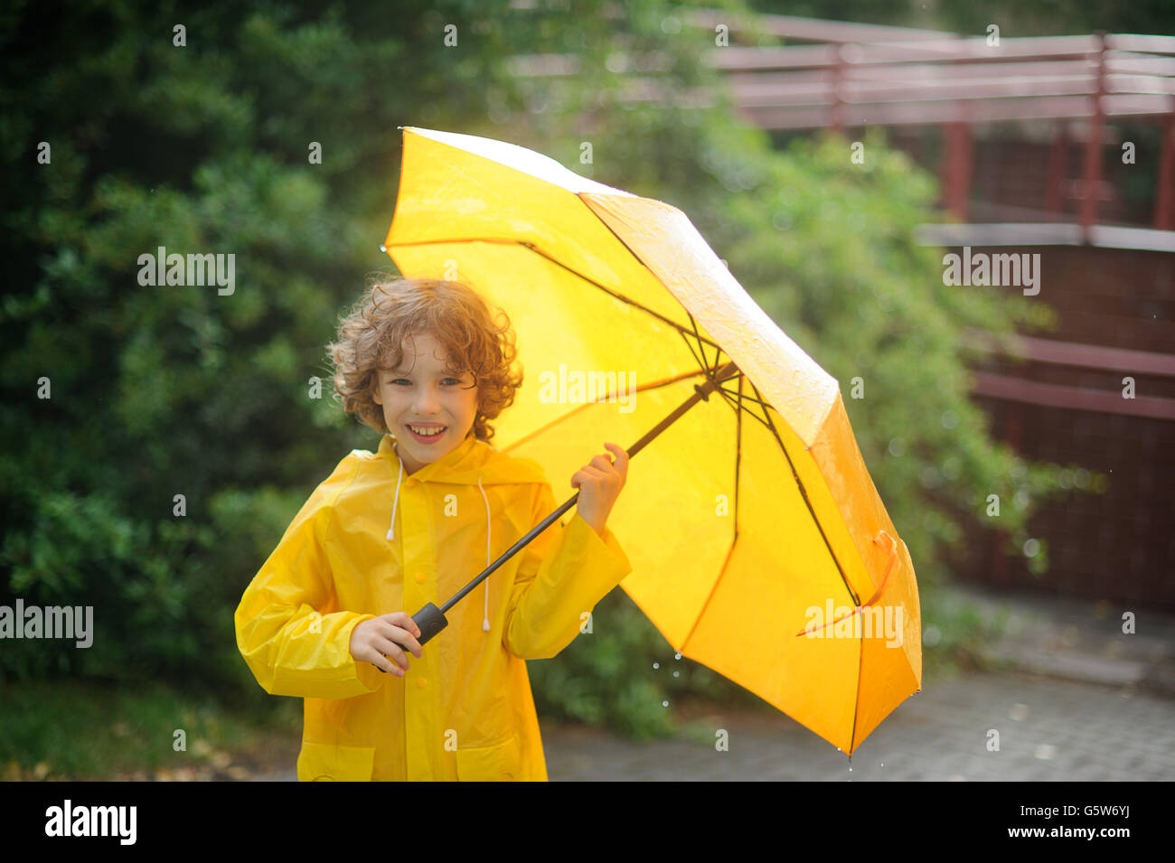 The cheerful boy with a yellow umbrella is in the yard under a rain. He holds an open yellow umbrella. Large drops - Stock Image