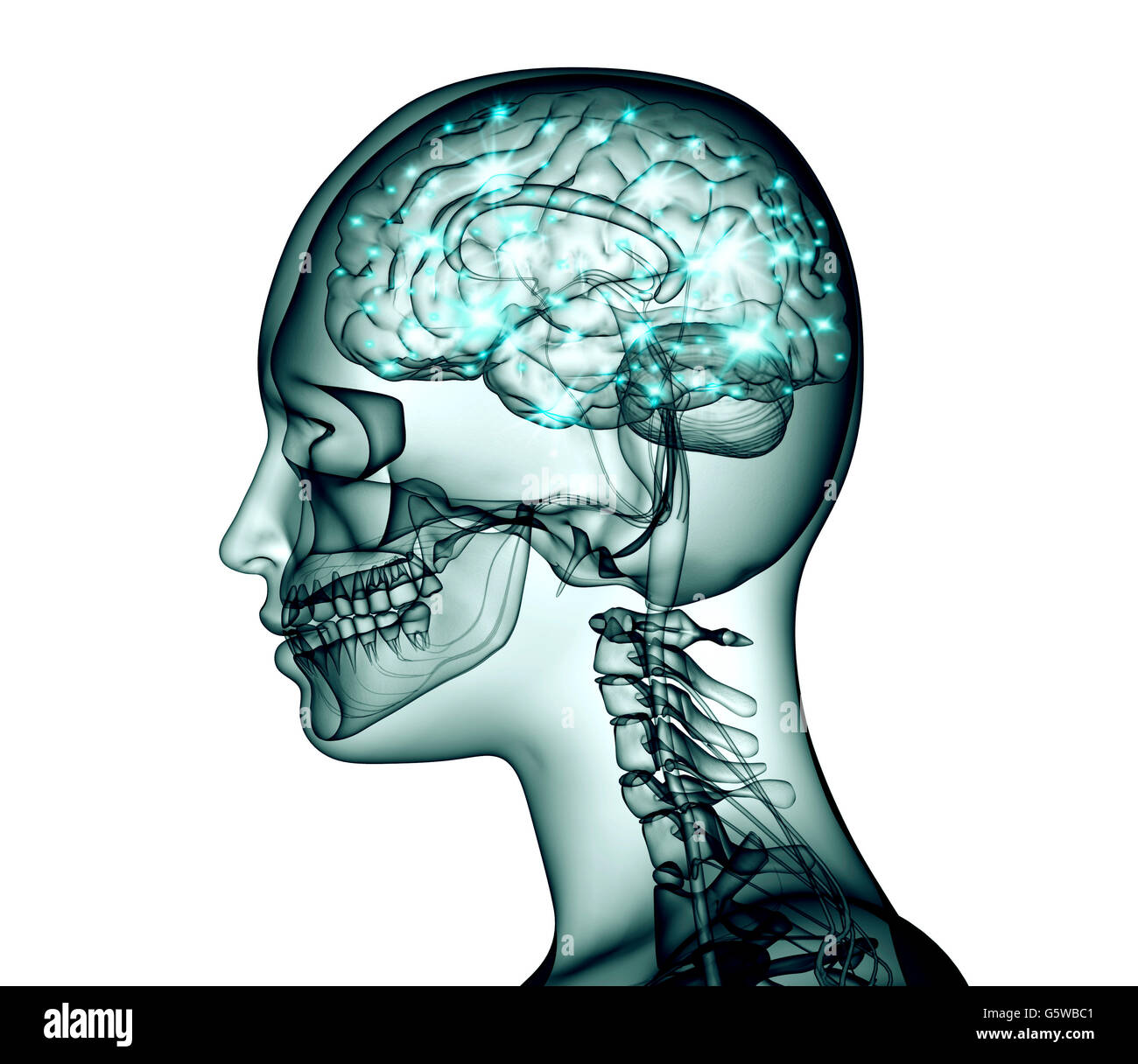 x-ray image of human head with brain and electric pulses, 3d illustration - Stock Image