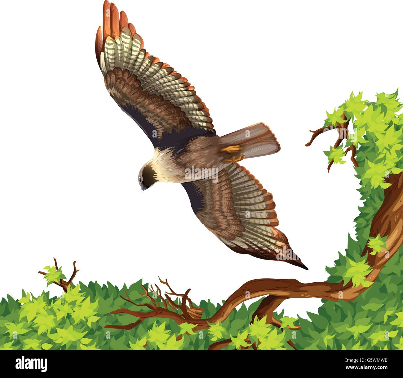 Eagle flying over the tree illustration - Stock Image