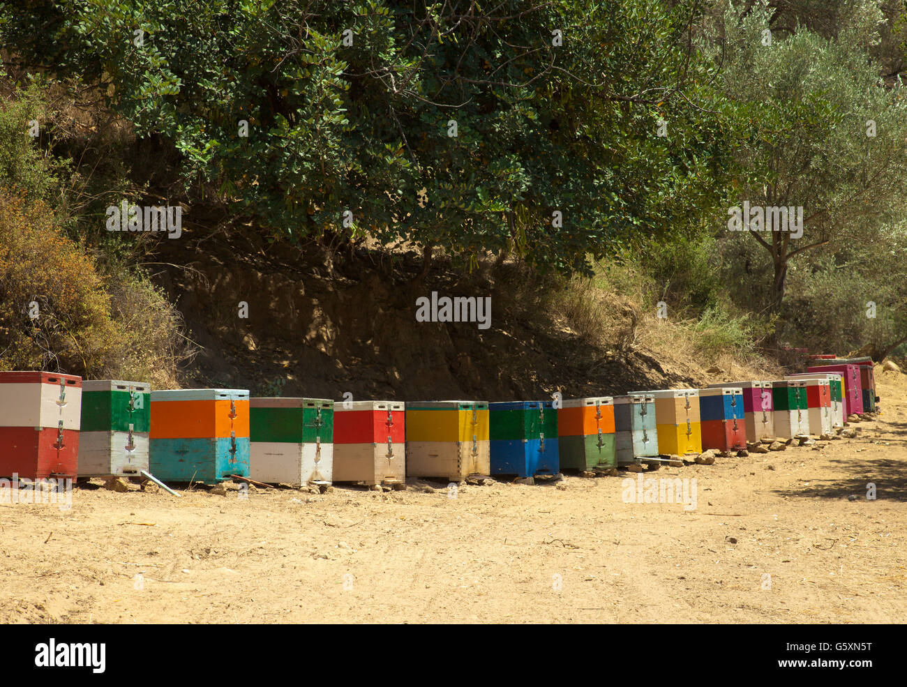 Row of beehives, in Crete, Greece. - Stock Image