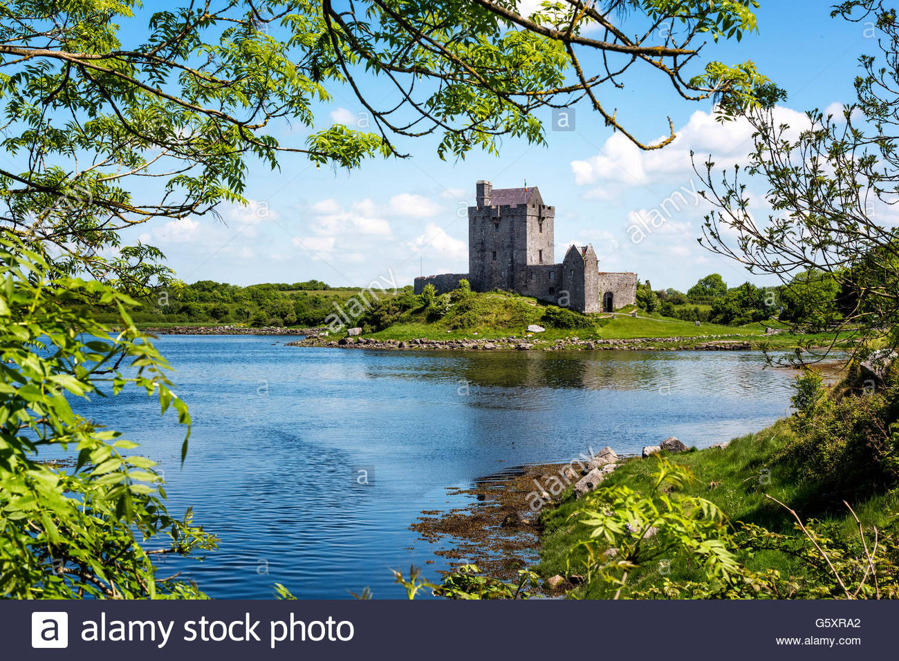 Dunguaire Castle Kinvarra Galway Ireland - Stock Image