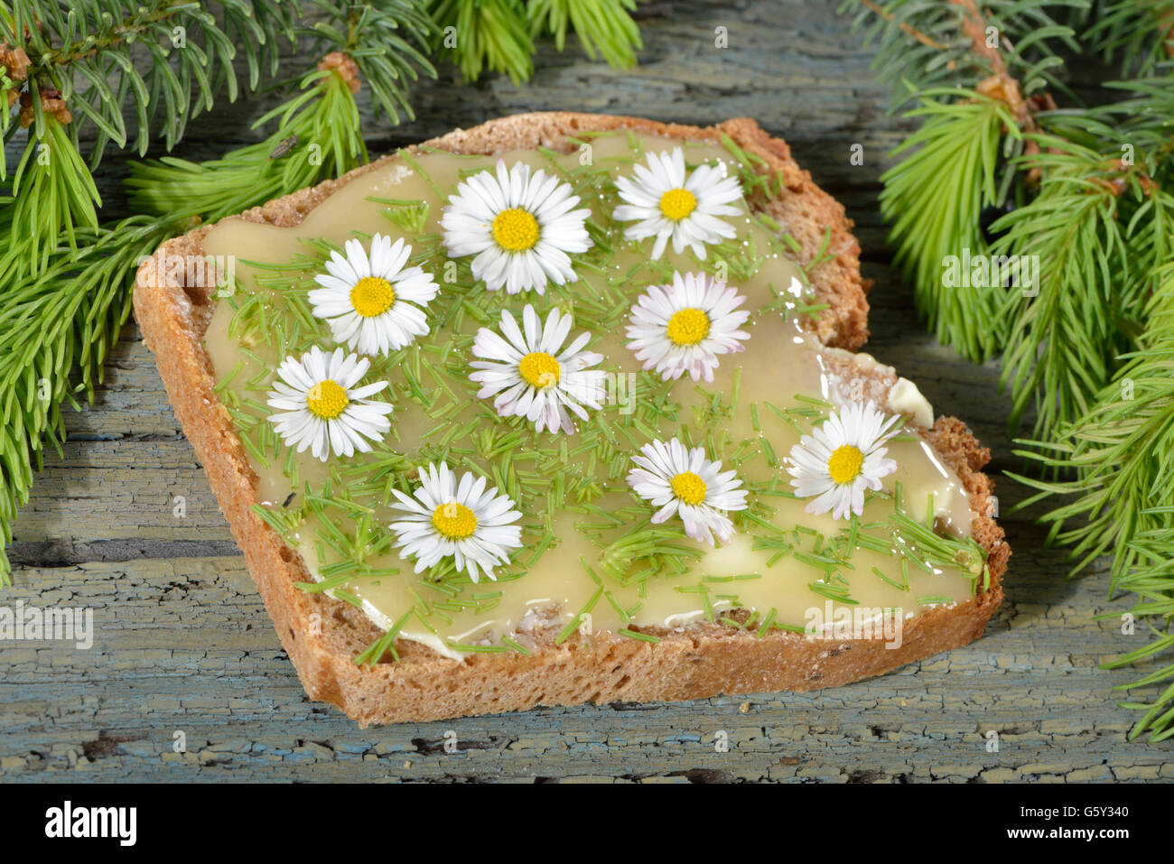 Spelt bread with spruce and daisy / (Bellis perennis), (Picea) - Stock Image