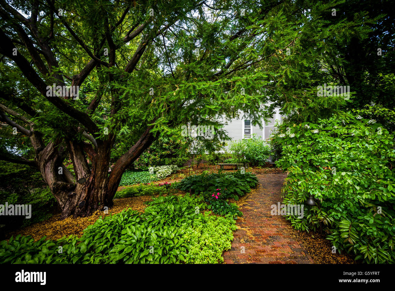 Gardens On The Campus Of Brown University, In Providence, Rhode Stock  Photo: 106940620   Alamy