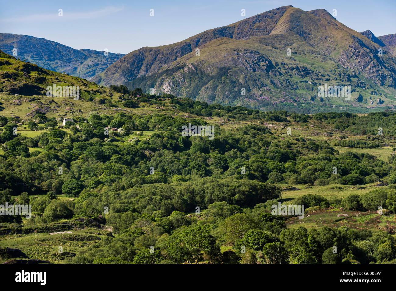 Caha Mountains Beara Peninsula, , Ireland - Stock Image