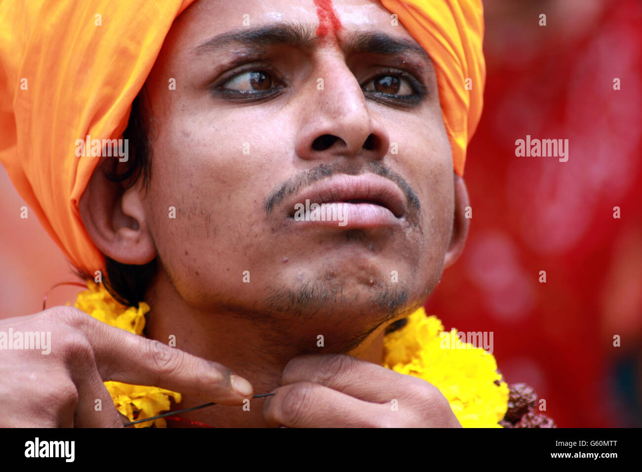 A closeup view of the painful expression of a tribal Indian man performing a bizarre ritual of passing a thin rod - Stock Image