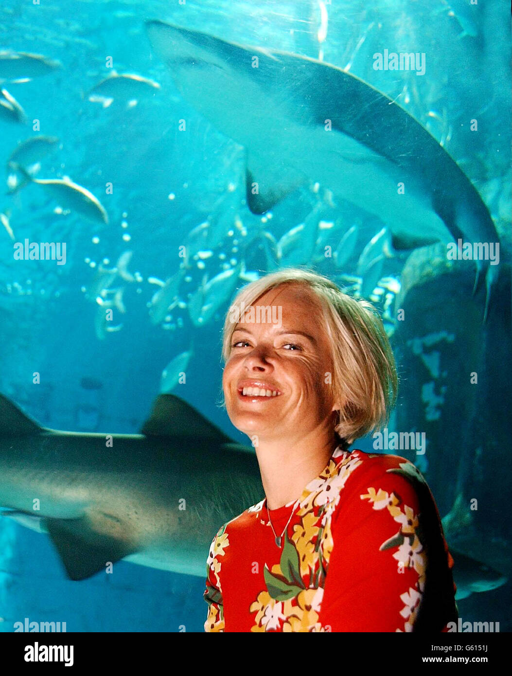 Mariella Frostrup Shark Week - Stock Image