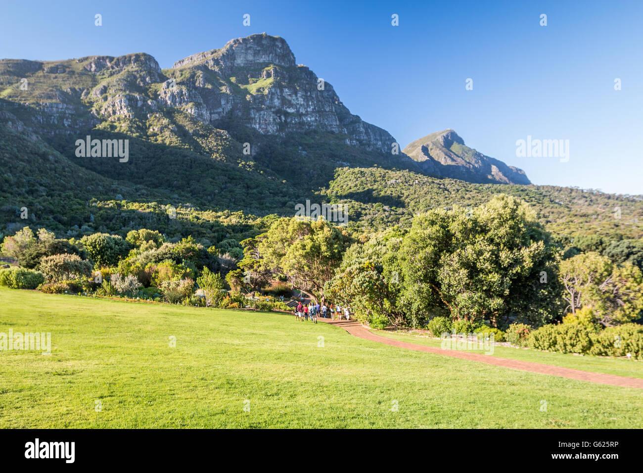 Kirstenbosch National Botanical Garden, Cape Town South Africa - Stock Image