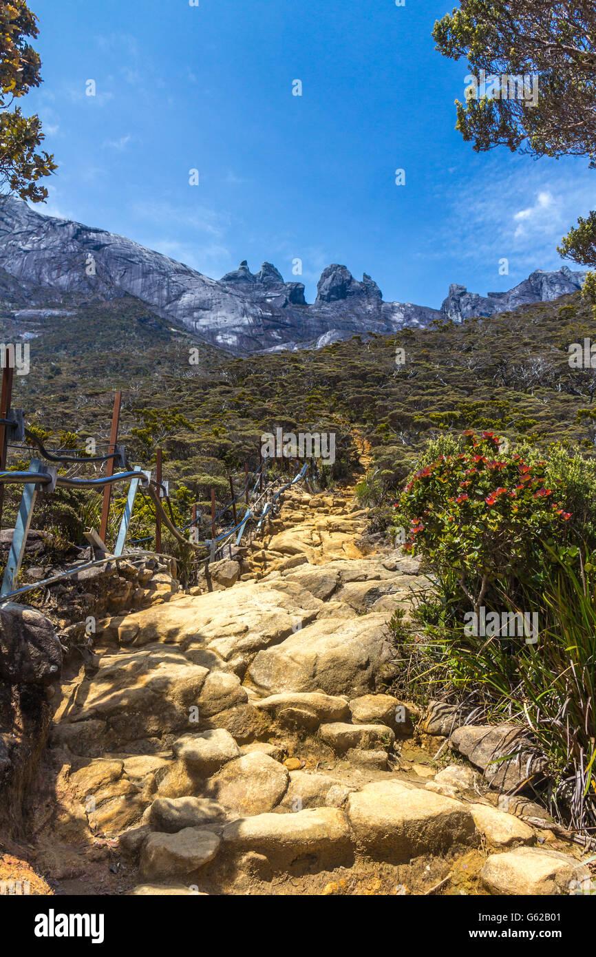Hiking in Mount Kinabalu Sabah, Malaysia - Stock Image