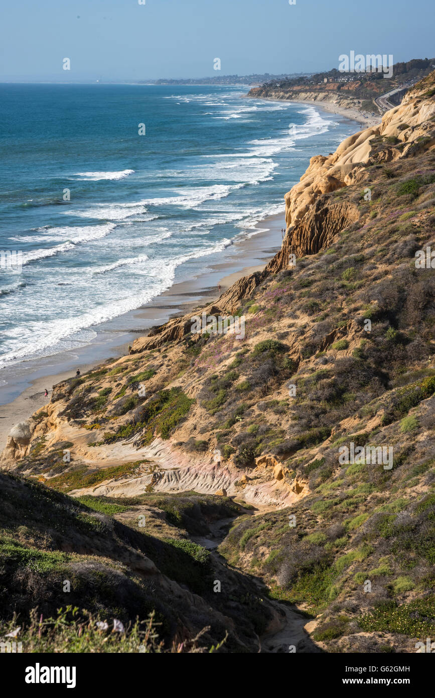 Torrey Pines Sate Park, San Diego, CA - Stock Image