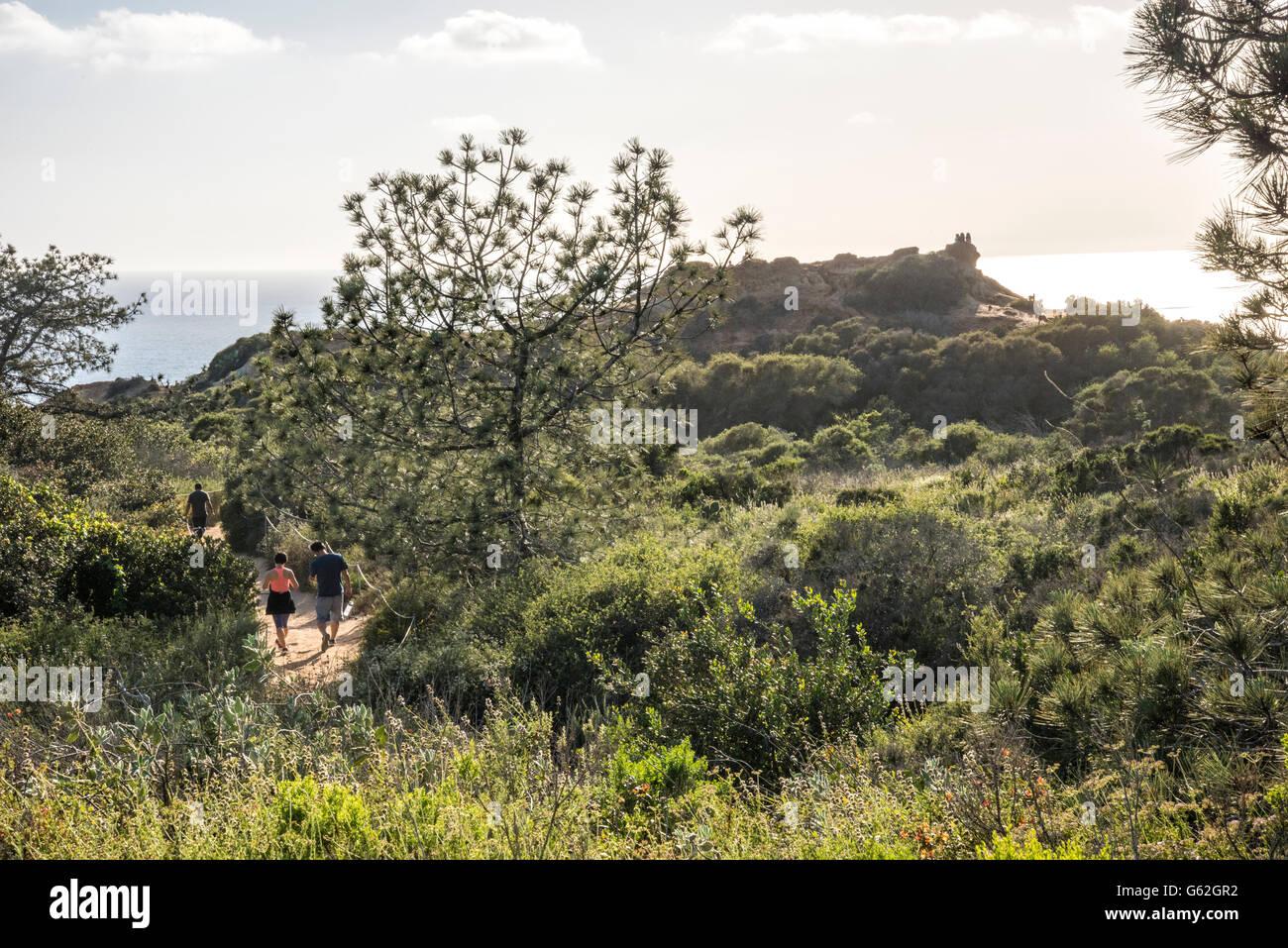 walkers at Torrey Pines Sate Park, San Diego, CA - Stock Image