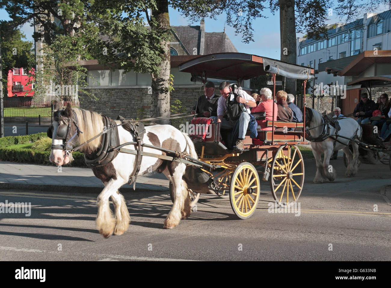 Tourists on a pony trap ride in Killarney town centre, County Kerry, Ireland (Eire). - Stock Image