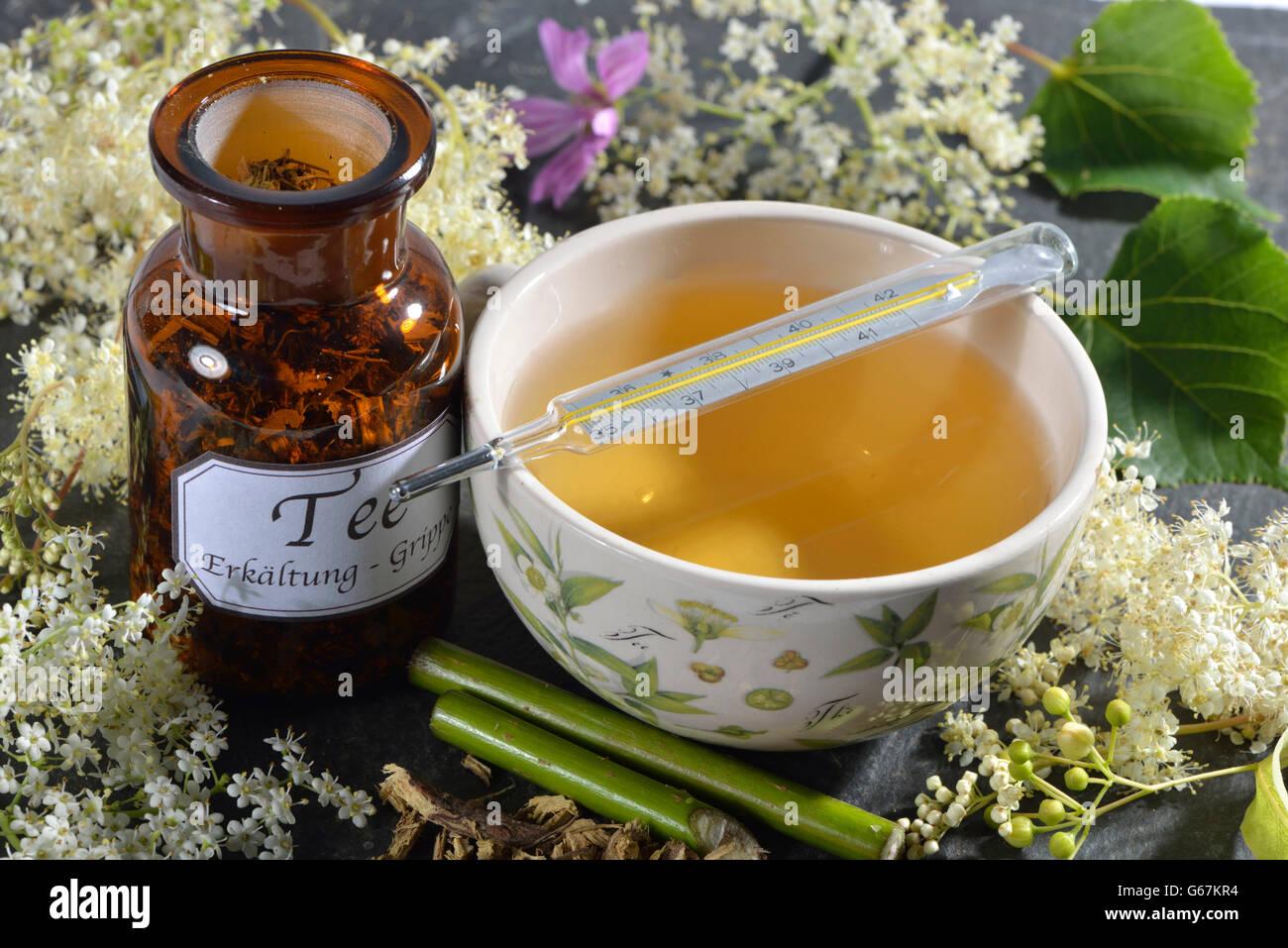 Colds and Influenza tea, Lime Tree blossom, Elderflower, Elderberry, Mallow leaf, Mallow, Common Mallow, Liquorice - Stock Image