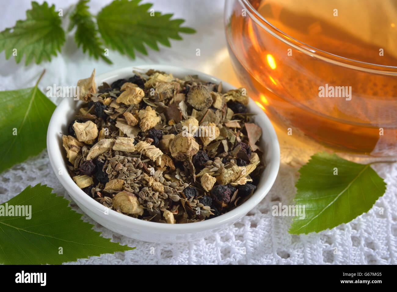 Liquorice root tea blend, birch leaves, stinging nettle, anise, blueberries / (Glycyrrhiza glabra, Betula pendula, - Stock Image