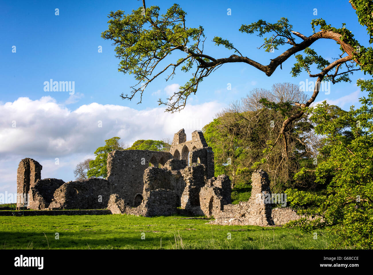 Inch Abbey, Co. Down, Northern Ireland - Stock Image