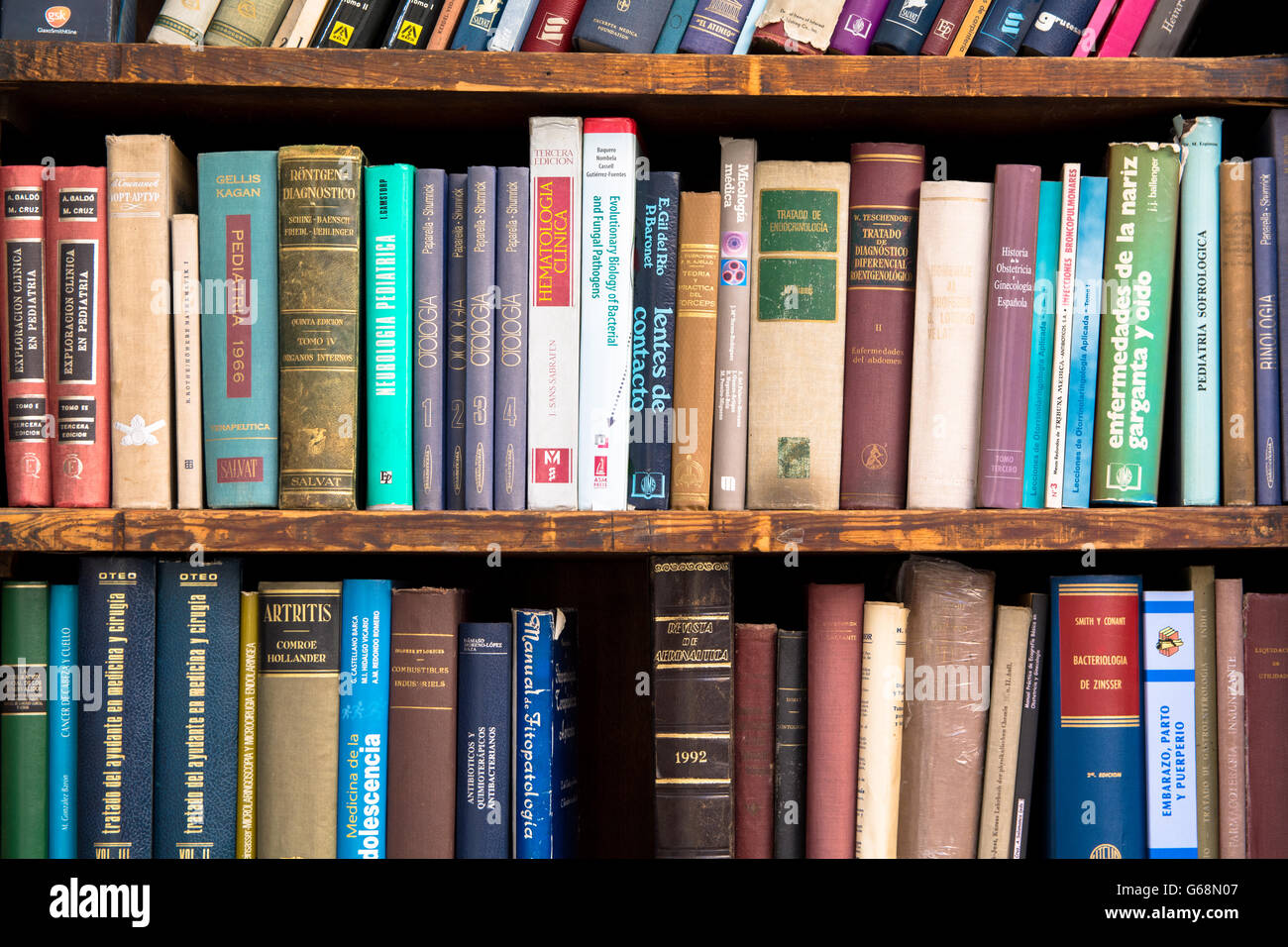 Old Books Displayed in a Bookshelf - Stock Image