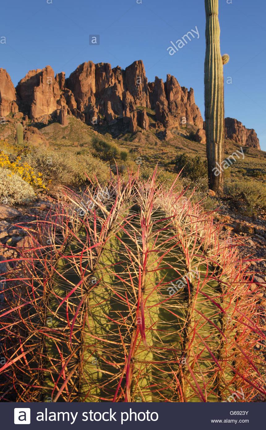 Flat Iron Peak, Sonoran Desert Superstition Mountains Arizona - Stock Image