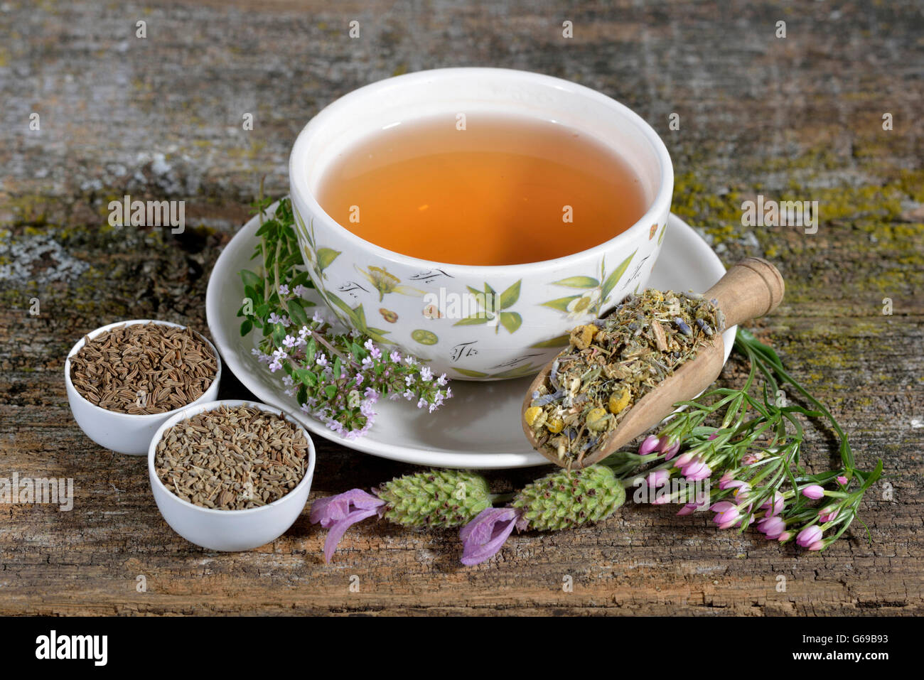 Stomach tea, anise, blessed thistle, common centaury
