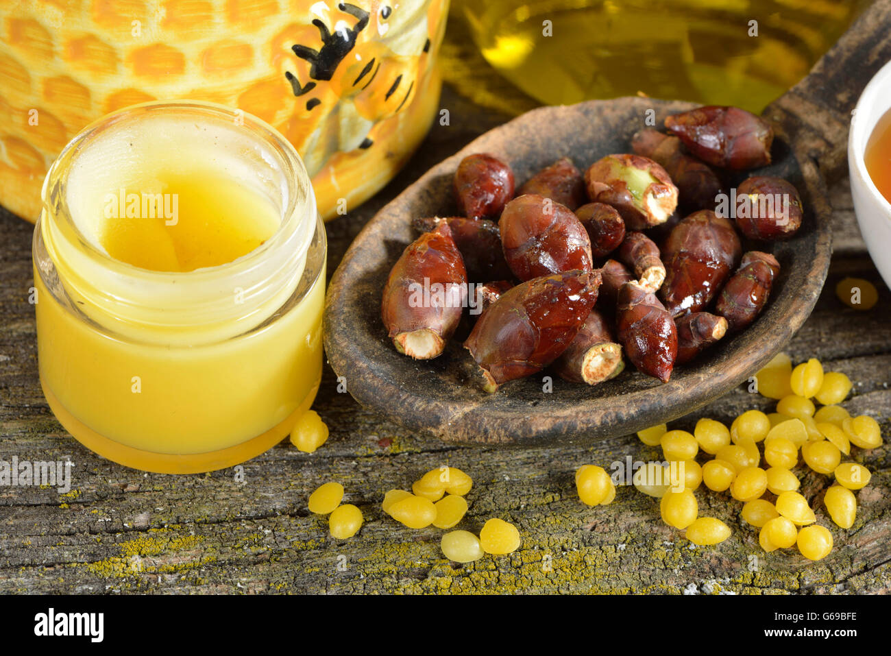 Chestnut buds and ointment / (Aesculus hippocastanum) - Stock Image