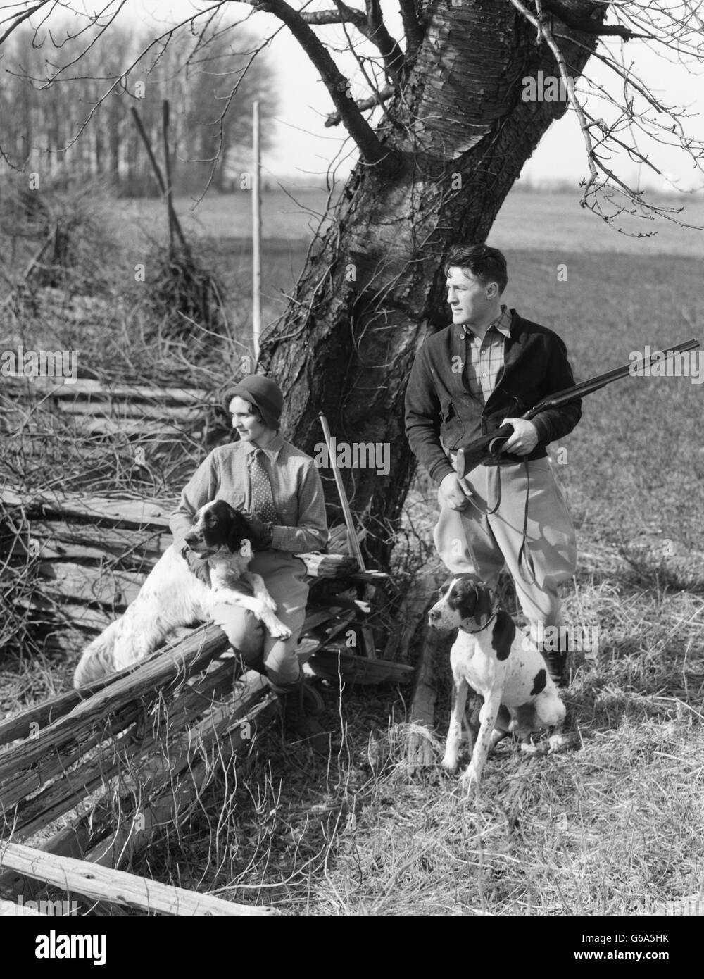 1930s COUPLE IN HUNTING GEAR WITH TWO SPRINGER SPANIEL DOGS WOMAN SITTING ON SPLIT RAIL FENCE MAN STANDING HOLDING - Stock Image