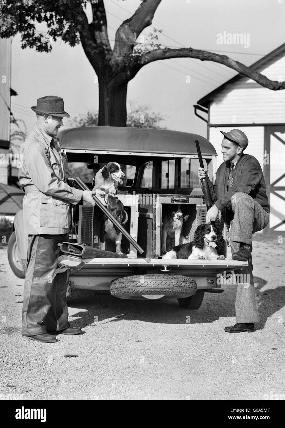 1930s TWO SMILING MEN HOLDING SHOTGUNS AT REAR OF STATION WAGON WITH FOUR SPANIEL HUNTING DOGS ONBOARD - Stock Image