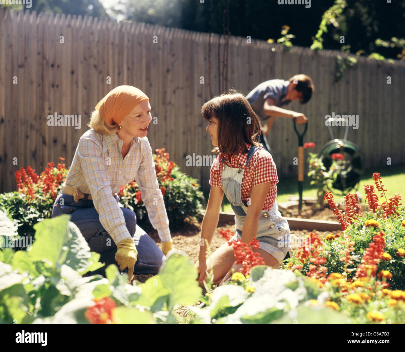 1970s MOTHER DAUGHTER AND SON GARDENING IN BACKYARD - Stock Image