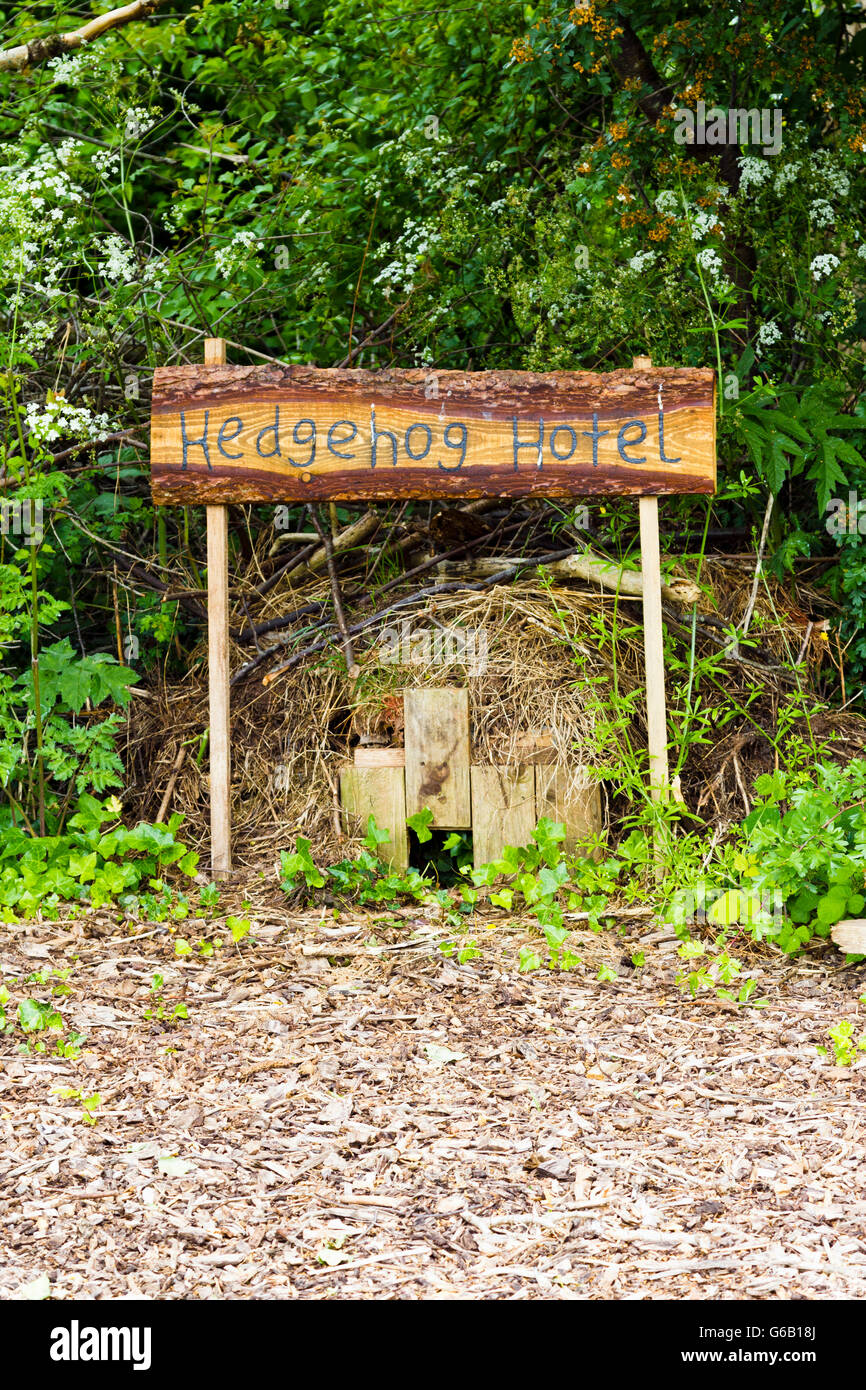 Hedgehog 'hotel' (shelter built specifically for hedgehogs) - Stock Image