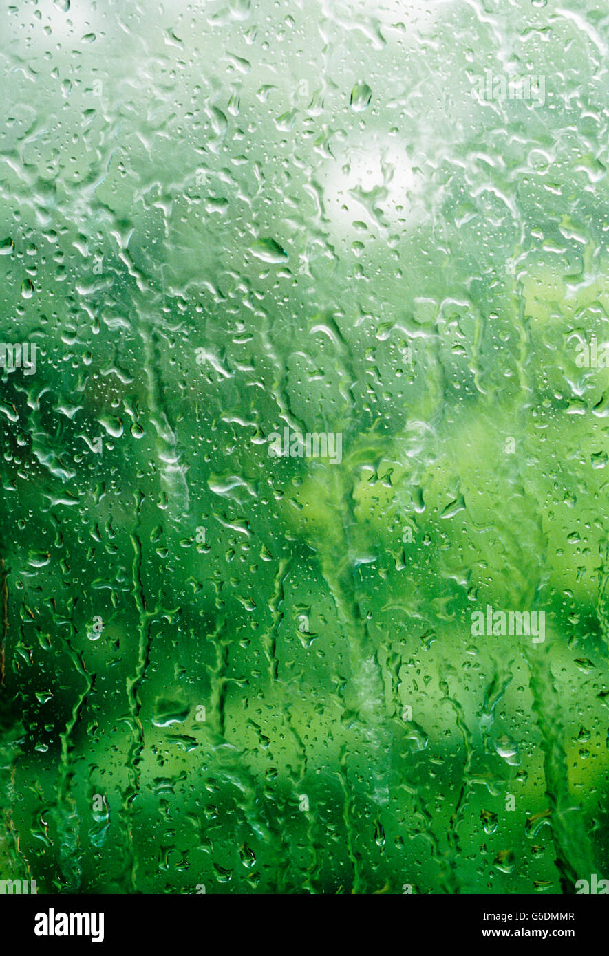 Water droplets beaded up on a glass window in the summer - Stock Image