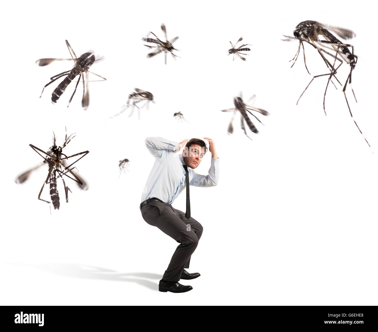 Mosquitoes attack - Stock Image