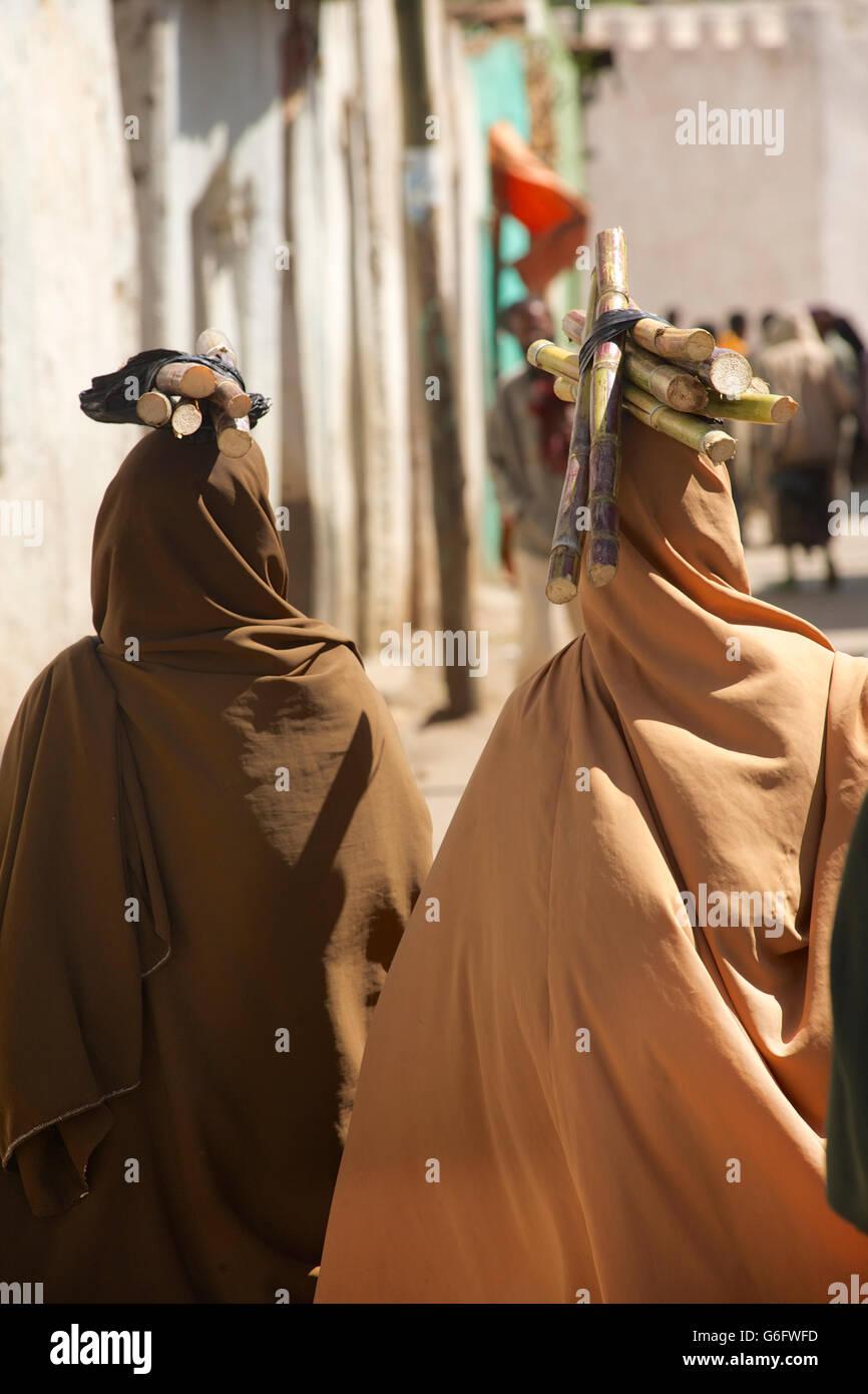 Harari women carrying sugarcane on their heads. Harar, Ethiopia - Stock Image