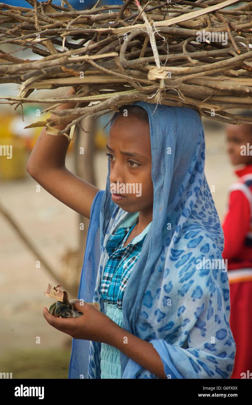 Ethiopian muslim girl carrrying firewood on her head. Harar, Ethiopia. - Stock Image