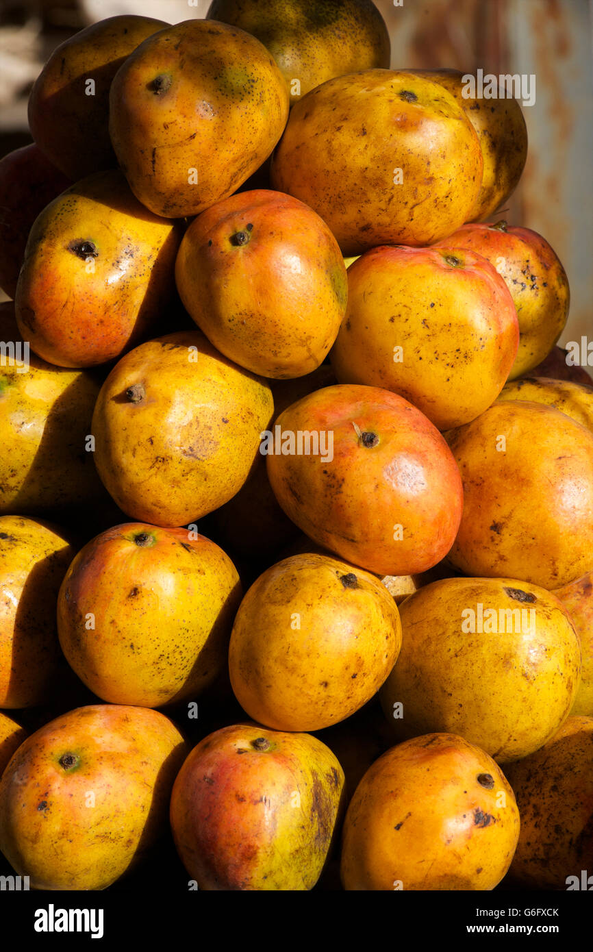 Mango for sale at market, Weldiya, northern Ethiopia. Mangoes - Stock Image