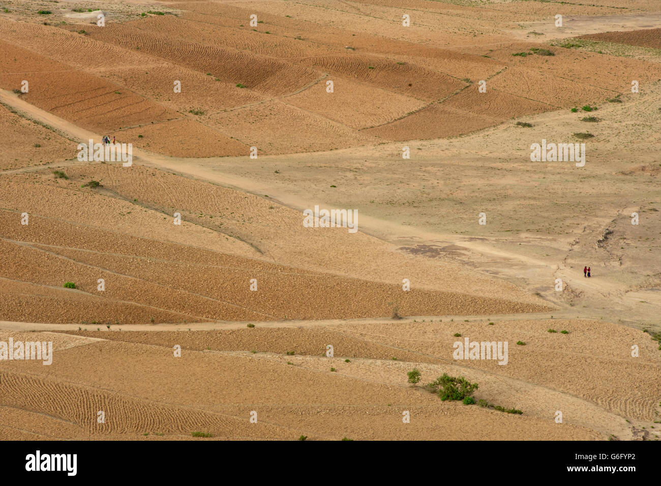 Agricultural fields, Eastern Tigray, near Gheralta, Ethiopia - Stock Image