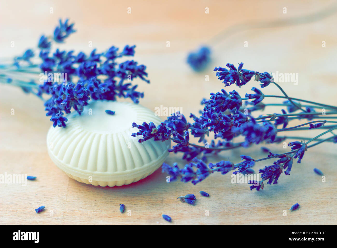 Soap and lavender flowers - Stock Image
