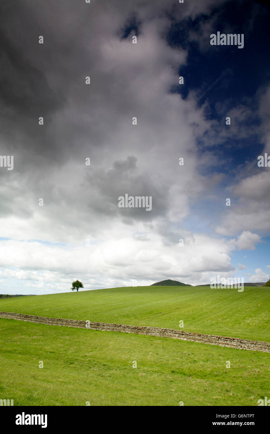 Distant view of Dufton Pike, Eden Valley, Cumbria, England, UK - Stock Image