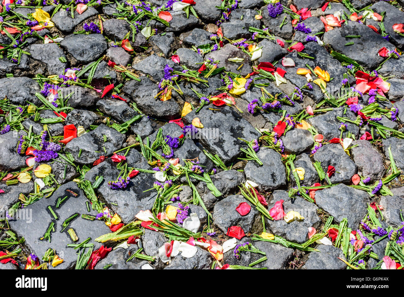 Lent carpet of flower petals on cobblestones for Holy Week procession in Antigua, Guatemala, Central America Stock Photo