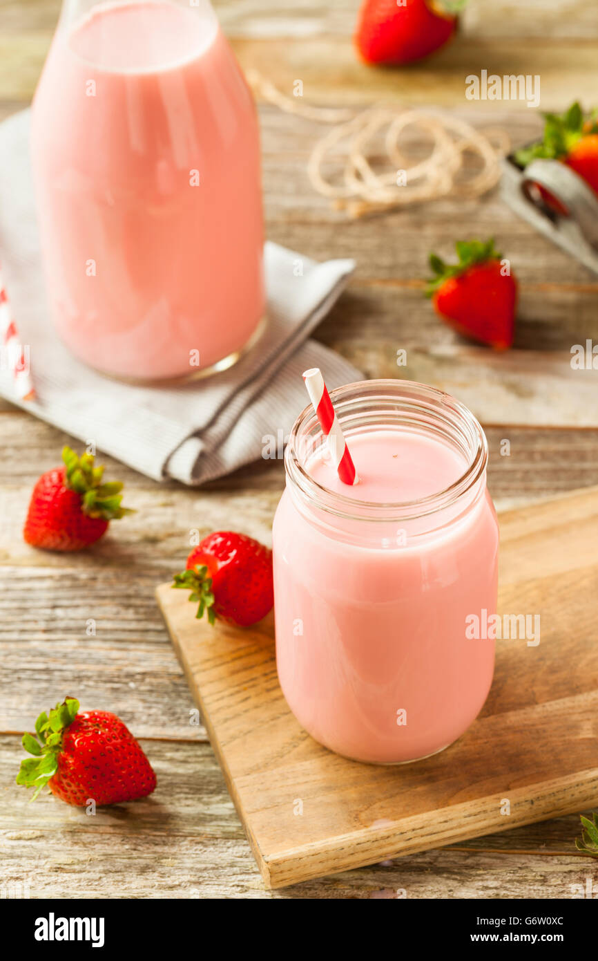 Homemade Organic Strawberry Milk Ready to Drink - Stock Image
