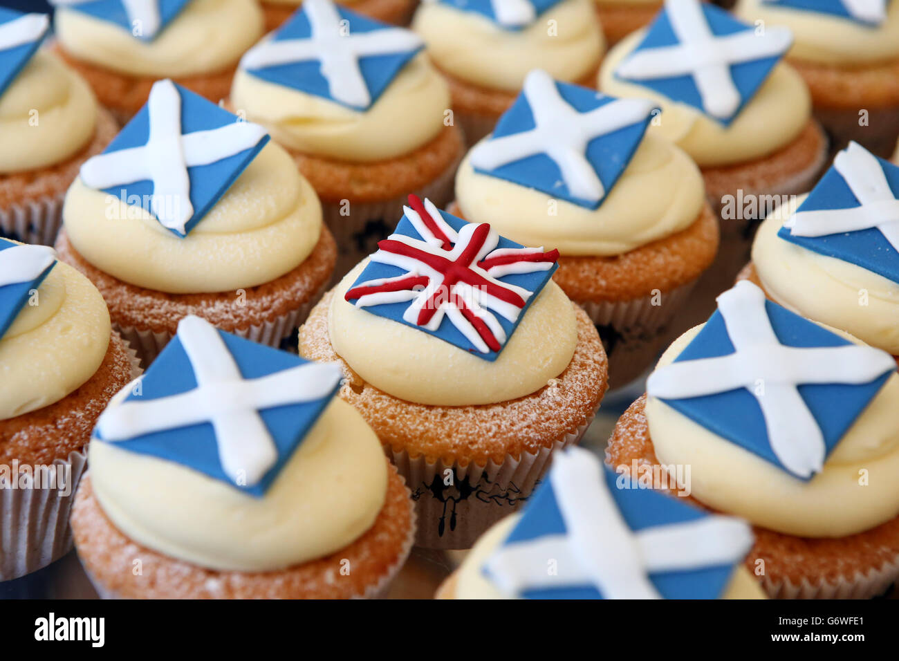 Scottish Independence Referendum - Cuckoo's - Yes, No or Undecided Cupcake - Edinburgh - Stock Image