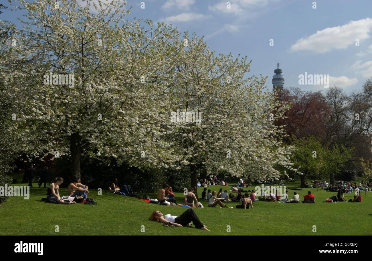 Londoners Laze Sunshine - Stock Image