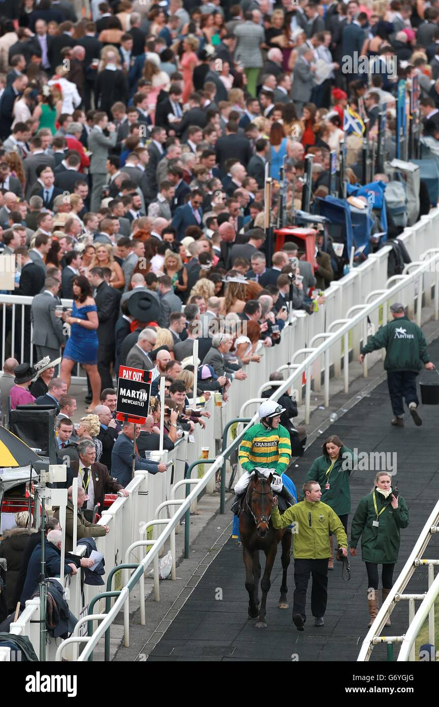 Horse Racing - The Crabbie's Grand National 2014 - Ladies Day - Aintree Racecourse - Stock Image