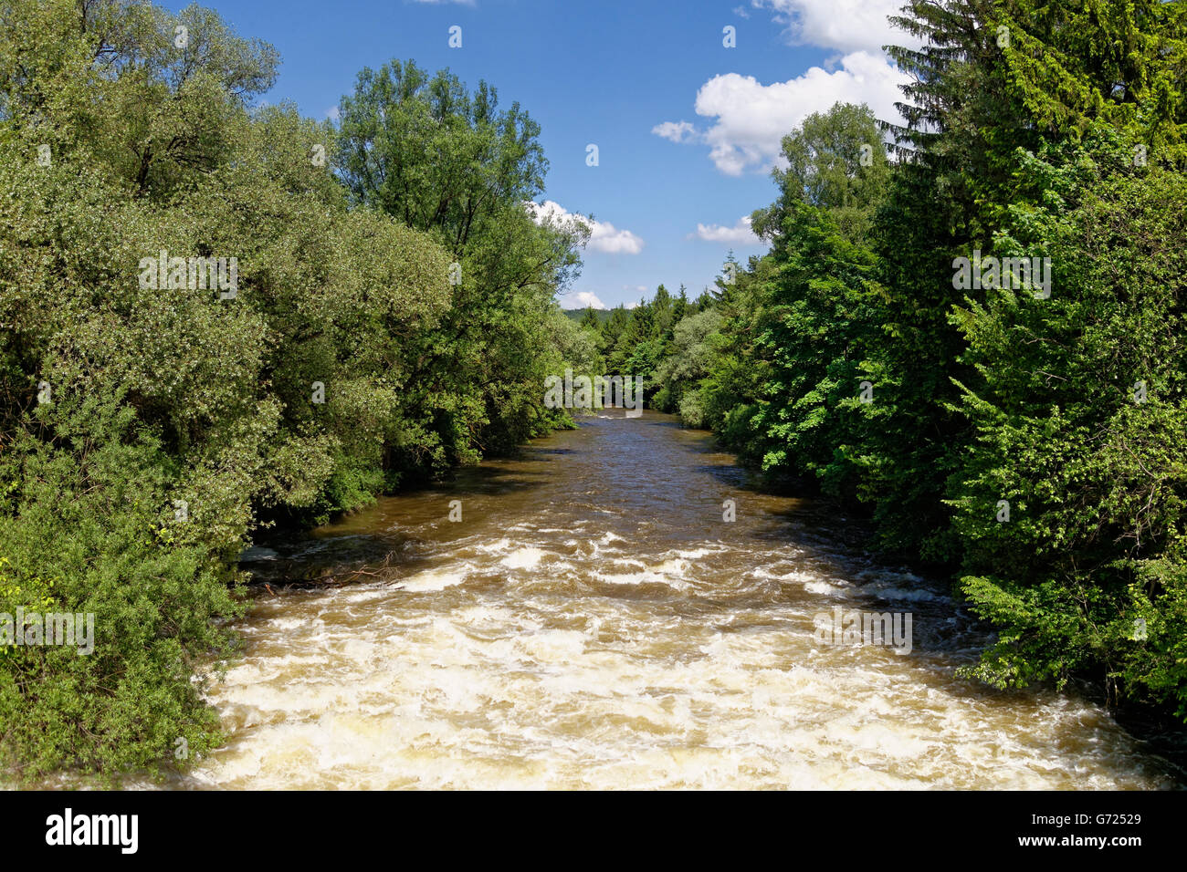 Loisach river, Loisach canal near river mouth into the Isar, nature reserve Isarauen, Pupplinger Au, Wolfratshausen - Stock Image