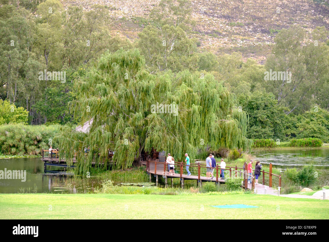 Stark-Conde winery in Jonkershoek Valley, Stellenbosch, South Africa - Stock Image