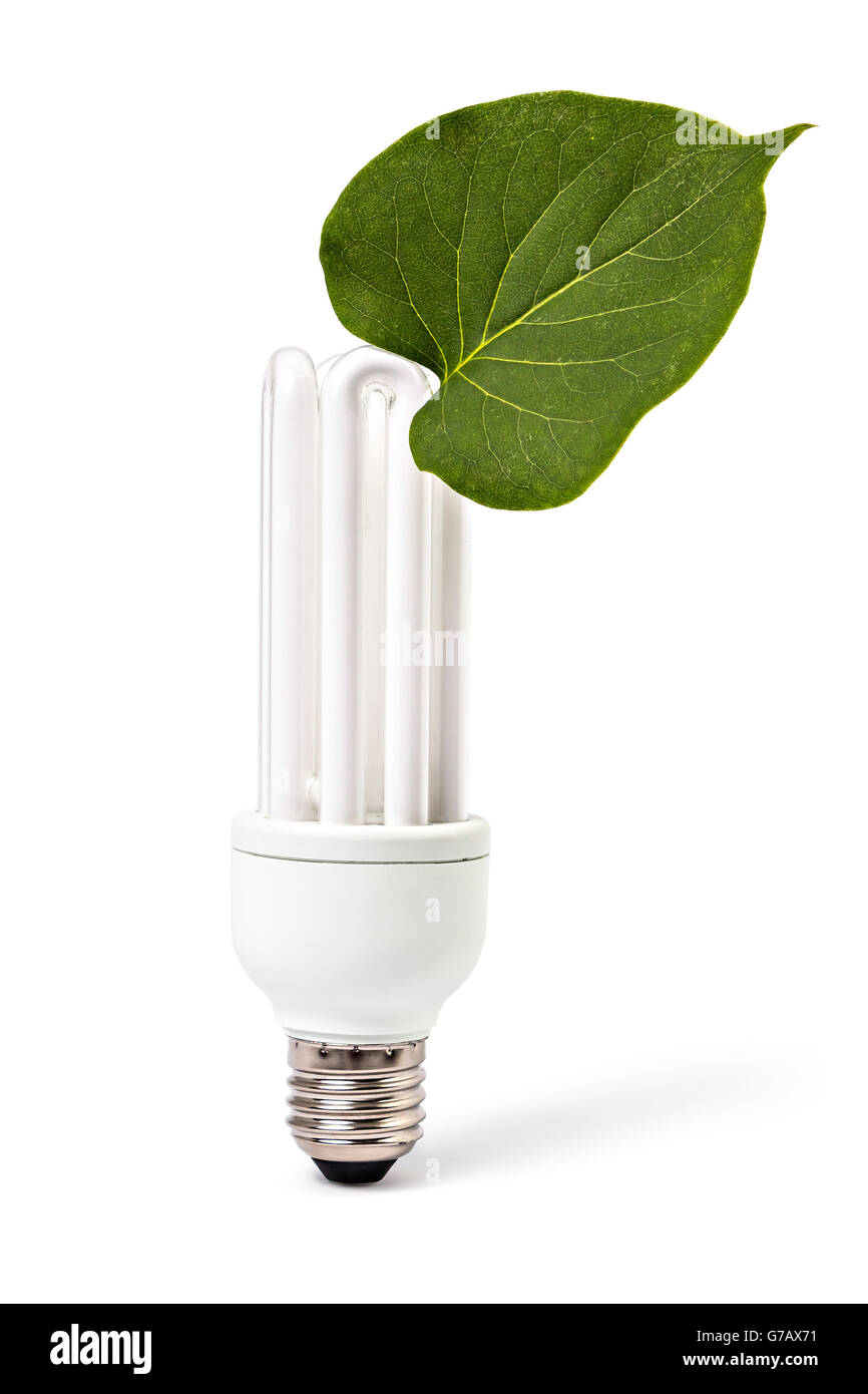 Energy saving light bulb and plant on white background, green energy concept - Stock Image