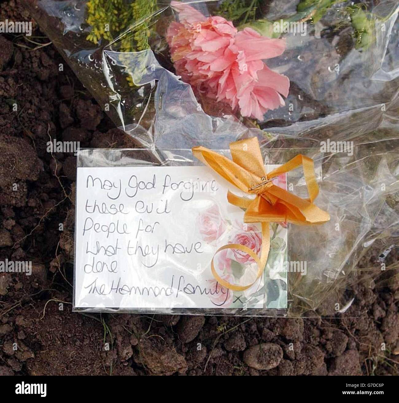 Mary POCKNELL: Frost, Gilchrist and Related Families