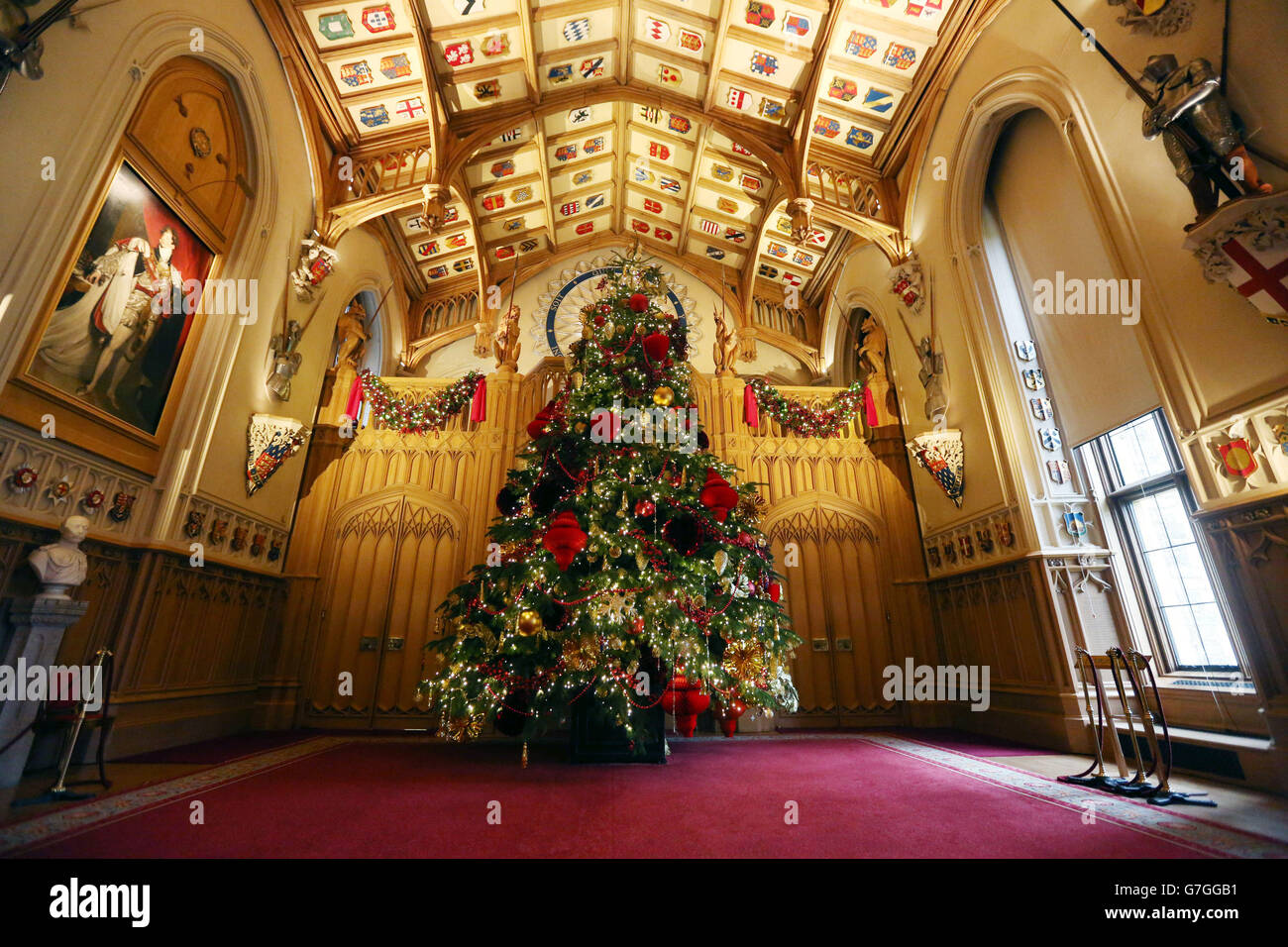 Customs and Traditions - Christmas - Nordmann Fir Tree  - St George's Hall - Windsor Castle - Stock Image